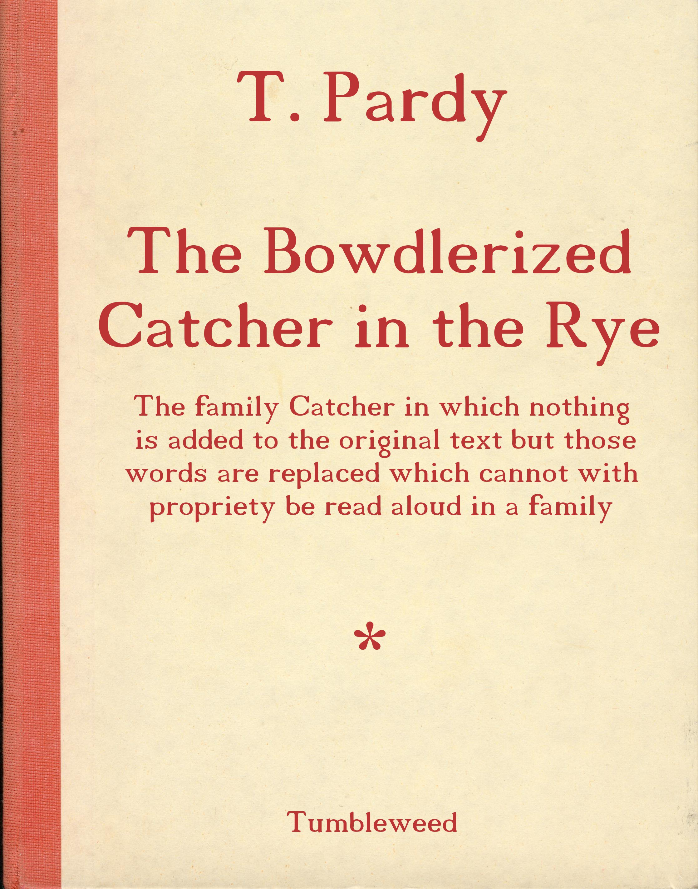Catcher In The Rye Theme Essay The Catcher In The Rye Internal